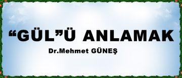 """""""GÜL""""Ü ANLAMAK"""