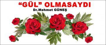 """""""GÜL"""" OLMASAYDI"""